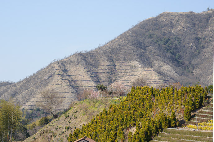 Odd Mountain Landscaping probably to prevent erosion, but it sure looks odd -- Imabari, Ehime, Japan -- Copyright 2011 Jeffrey Friedl, http://regex.info/blog/