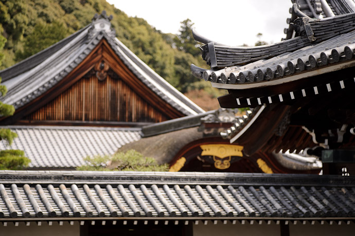 Layers of Roofs, #2 -- Sennyuji Temple(泉涌寺) -- Kyoto, Japan -- Copyright 2011 Jeffrey Friedl, http://regex.info/blog/