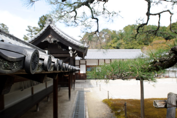 Sennyuji Temple(泉涌寺) -- Kyoto, Japan -- Copyright 2011 Jeffrey Friedl, http://regex.info/blog/