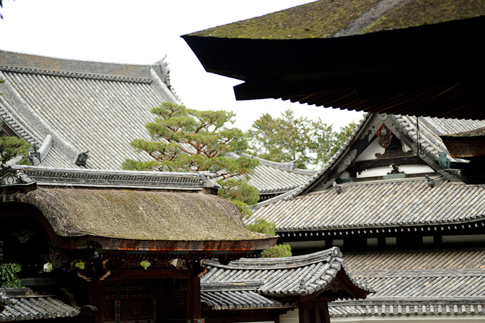 Cacophony of Roofs -- Sennyuji Temple(泉涌寺) -- Kyoto, Japan -- Copyright 2011 Jeffrey Friedl, http://regex.info/blog/