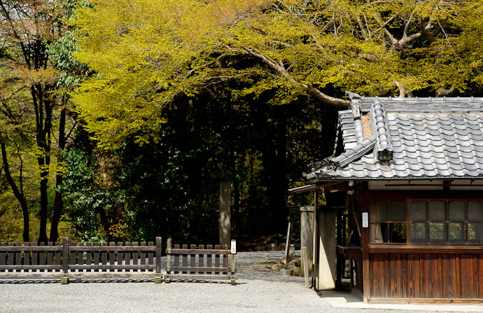 desktop background image of side entrance to the Sennyuji Temple (泉涌寺), Kyoto Japan, under an impressive maple -- Sennyuji Temple (泉涌寺) -- Copyright 2011 Jeffrey Friedl, http://regex.info/blog/