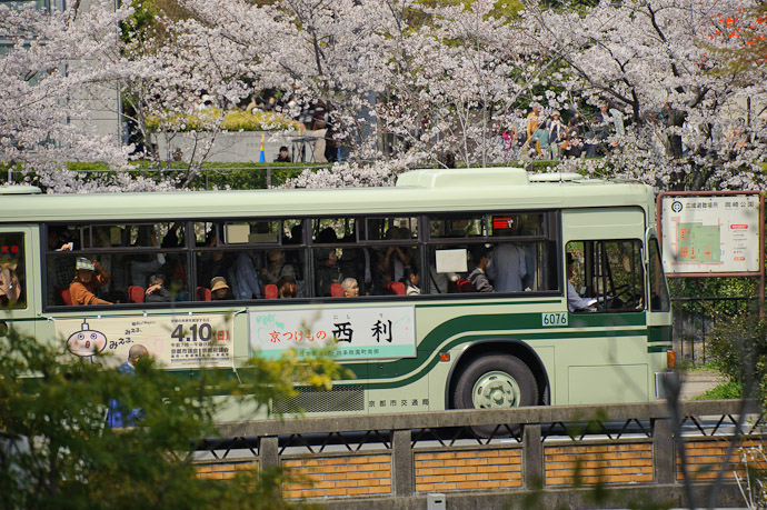 Ultra-Packed Bus sitting in ultra-packed traffic -- Kyoto, Japan -- Copyright 2011 Jeffrey Friedl, http://regex.info/blog/