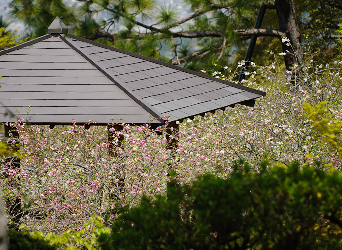 Gazebo -- Shogunzuka (将軍塚) -- Kyoto, Japan -- Copyright 2011 Jeffrey Friedl, http://regex.info/blog/