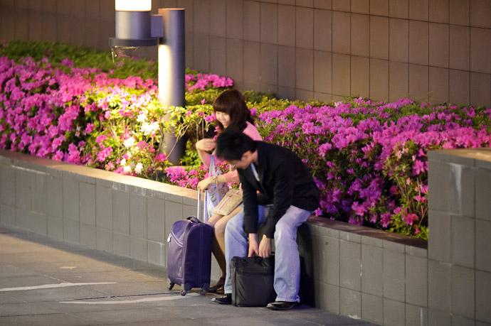 Kyoto Station (京都駅) -- Kyoto, Japan -- Copyright 2011 Jeffrey Friedl, http://regex.info/blog/