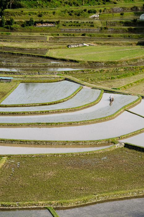 "Working the Rice Paddies Overlooking Aragijima City (あらぎ島), Wakayama Prefecture — May 2011 ( More found in "" The Aragishima Terraced Rice Paddies of Wakayama "" ) -- Overlooking Aragijima (あらぎ島) -- Aridagawa, Wakayama, Japan -- Copyright 2011 Jeffrey Friedl, http://regex.info/blog/ -- This photo is licensed to the public under the Creative Commons Attribution-NonCommercial 4.0 International License http://creativecommons.org/licenses/by-nc/4.0/ (non-commercial use is freely allowed if proper attribution is given, including a link back to this page on http://regex.info/ when used online)"