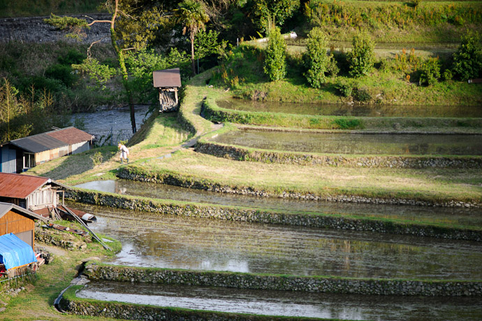A Farmer's Work Is Never Done from what I could tell, he was of a fairly advanced age -- Aragijima Rice Terraces (蘭島) -- Aridagawa, Wakayama, Japan -- Copyright 2011 Jeffrey Friedl, http://regex.info/blog/