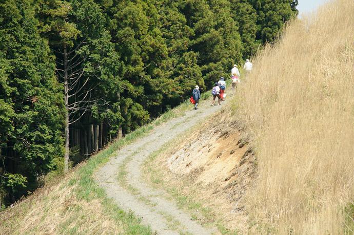 Heading Deeper into the Mountains -- Oishi Kougen (生石高原) -- Kaisougun, Wakayama, Japan -- Copyright 2011 Jeffrey Friedl, http://regex.info/blog/