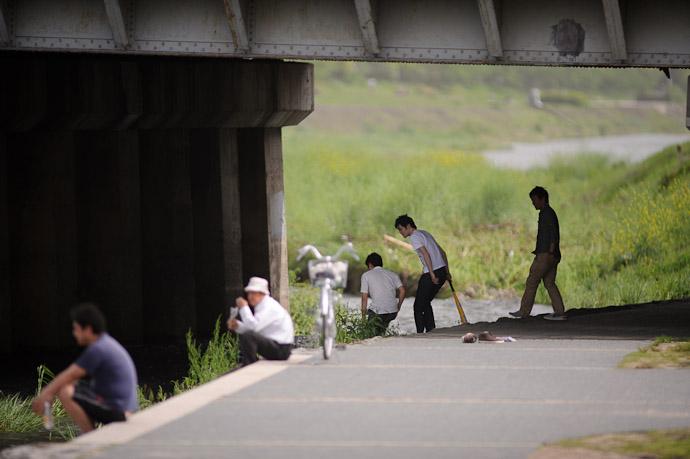 Still Trying -- Kyoto, Japan -- Copyright 2011 Jeffrey Friedl, http://regex.info/blog/