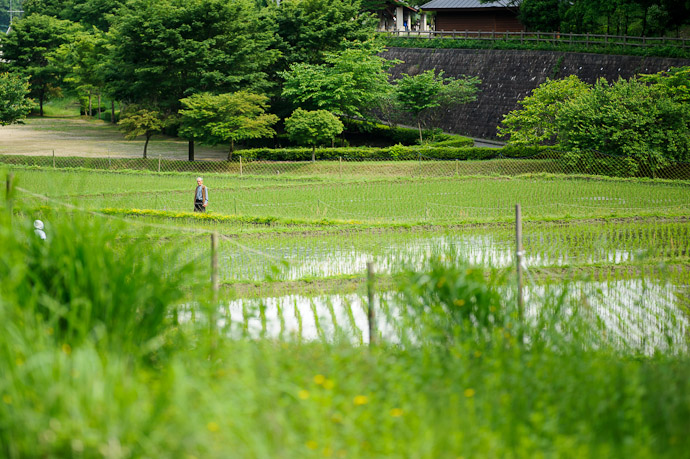 Neighborly Chat -- Uji, Kyoto, Japan -- Copyright 2011 Jeffrey Friedl, http://regex.info/blog/
