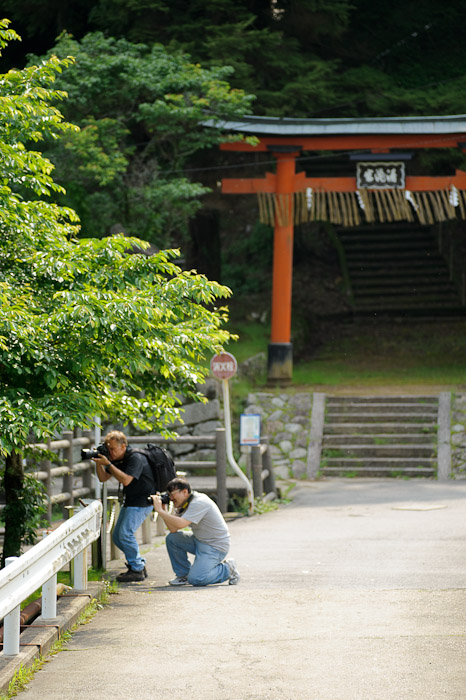 Filling Their Time waiting for me to finish with the flower -- Uji, Kyoto, Japan -- Copyright 2011 Jeffrey Friedl, http://regex.info/blog/