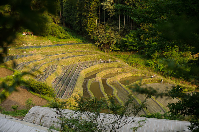 Lotsa' Layers -- Uji, Kyoto, Japan -- Copyright 2011 Jeffrey Friedl, http://regex.info/blog/