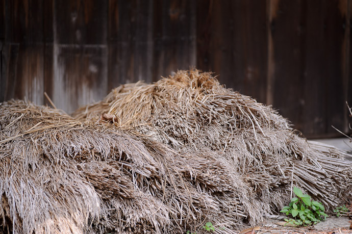 Piled Chaff not far from the onions -- Uji, Kyoto, Japan -- Copyright 2011 Jeffrey Friedl, http://regex.info/blog/