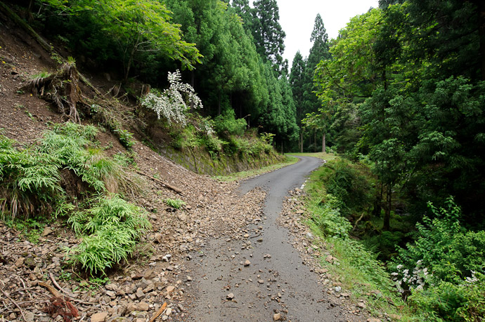 The Road Ahead can sometime be rocky -- Kyoto, Japan -- Copyright 2011 Jeffrey Friedl, http://regex.info/blog/