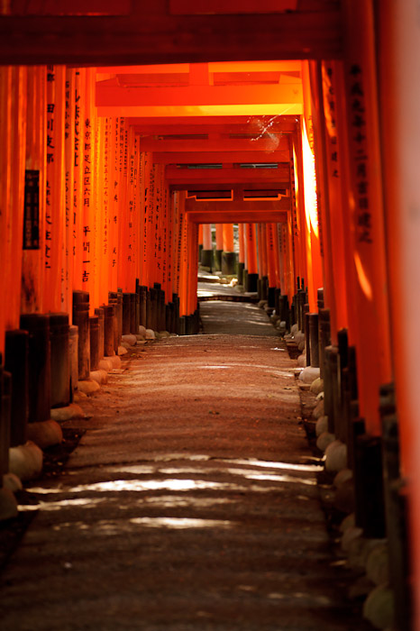 Typical Scene enriched by a splash of sun breaking through the forest cover -- Fushimi-Inari Taisha (伏見稲荷大社) -- Kyoto, Japan -- Copyright 2011 Jeffrey Friedl, http://regex.info/blog/