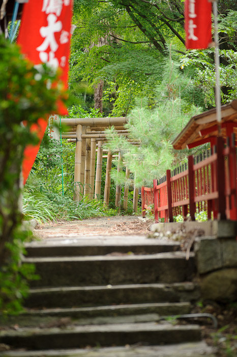 Bamboo Gates -- Fushimi-Inari Taisha (伏見稲荷大社) -- Kyoto, Japan -- Copyright 2011 Jeffrey Friedl, http://regex.info/blog/