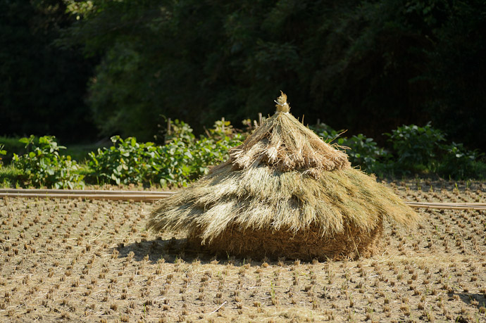 "Huge Rice ""Hut""? -- Ikoma, Nara, Japan -- Copyright 2011 Jeffrey Friedl, http://regex.info/blog/"