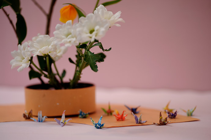 detail of a child's ikebana arrangement, at a show in Kyoto Japan