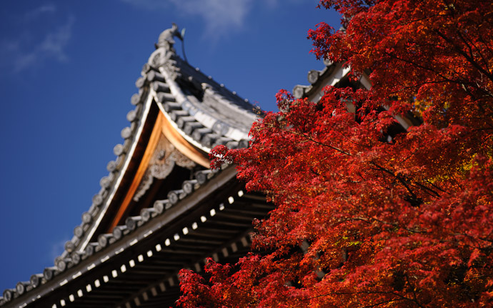 desktop background image of fall colors at the Yoshiminedera Temple (善峯寺), Kyoto Japan  --  View from the parking lot  --  Yoshiminedera Temple (善峯寺)  --  Copyright 2011 Jeffrey Friedl, http://regex.info/blog/