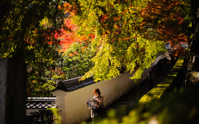 desktop background image of fall colors at the Yoshiminedera Temple (善峯寺), Kyoto Japan  --  Lost  --  Yoshiminedera Temple (善峯寺)  --  Copyright 2011 Jeffrey Friedl, http://regex.info/blog/