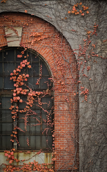 a vine-covered window at the 120-year-old brick building of Japan's first hydro-electric power plant