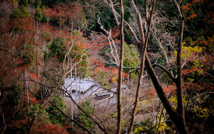 a fall-foliage scene near the Jingoji Temple (神護寺), Kyoto Japan