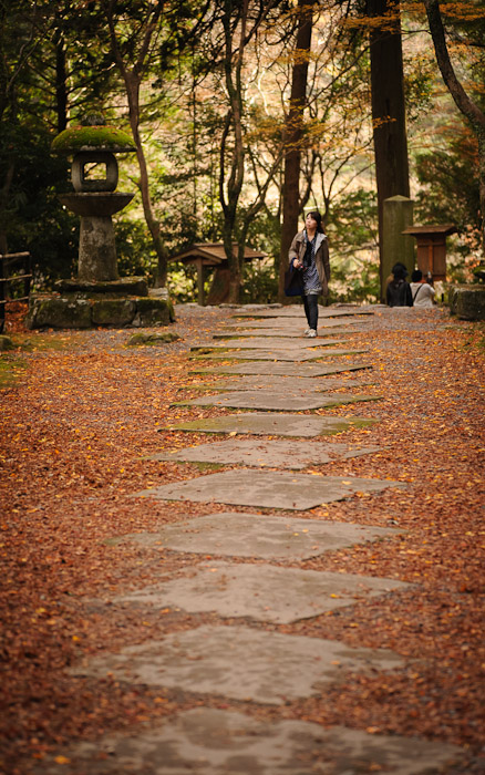 fall foliage scenes at the Kosanji Temple () in northwest Kyoto, Japan