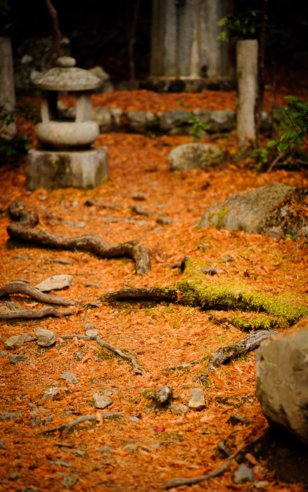 fall foliage scenes at the Kosanji Temple (高山寺) in northwest Kyoto, Japan