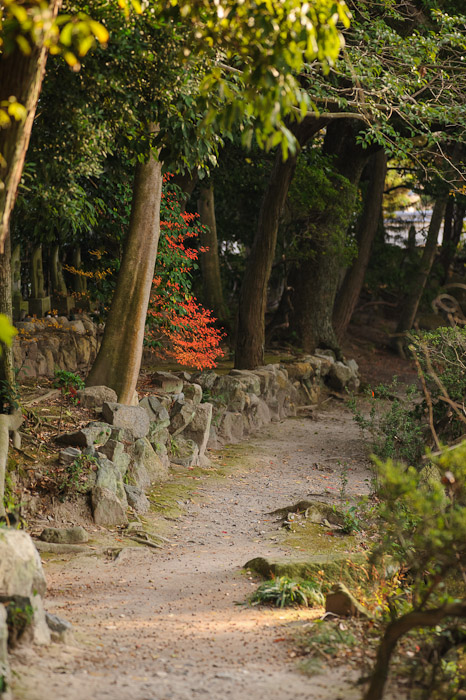 Back Path  --  Kajyuuji Temple (勧修寺)  --  Kyoto, Japan  --  Copyright 2011 Jeffrey Friedl, http://regex.info/blog/
