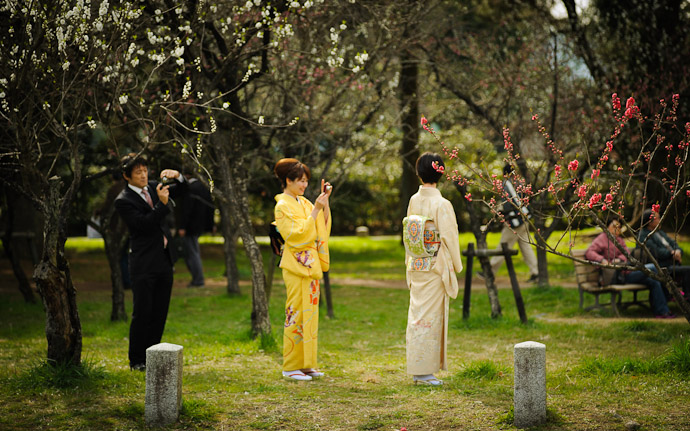 ladies in Kimono enjoying plum blossoms in Kyoto, Japan