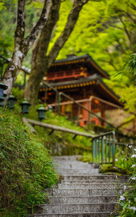desktop background image of a scene at the Otagi Nenbutsuji Temple (愛宕念仏寺) -- Entrance Path -- Otaginenbutsuji Temple (愛宕念仏寺) -- Kyoto, Japan -- Copyright 2012 Jeffrey Friedl, http://regex.info/blog/ -- This photo is licensed to the public under the Creative Commons Attribution-NonCommercial 4.0 International License http://creativecommons.org/licenses/by-nc/4.0/ (non-commercial use is freely allowed if proper attribution is given, including a link back to this page on http://regex.info/ when used online)