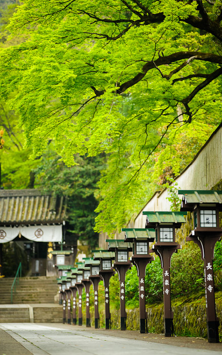 desktop background image of the entrance path to the Choraku-ji Temple () in Kyoto, Japan  --  Choraku-ji Temple Kyoto, Japan  --  Maruyama Park  --  Copyright 2012 Jeffrey Friedl, http://regex.info/blog/