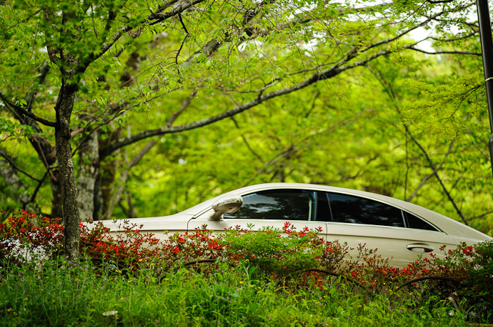 Nice Parking Spot  --  Maruyama Park  --  Kyoto, Japan  --  Copyright 2012 Jeffrey Friedl, http://regex.info/blog/