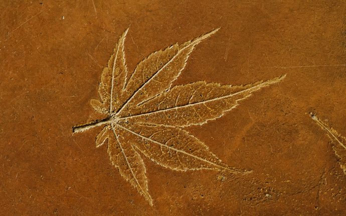desktop background image of what seems to be a leaf imprinted in a cement floor, at the Koumyou-in Temple, Kyoto Japan (光明院)  --  Koumyou-in Temple (光明院)  --  Copyright 2012 Jeffrey Friedl, http://regex.info/blog/