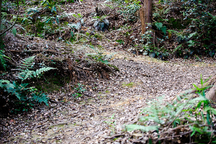 Steep Switchbacks  --  Kyoto, Japan  --  Copyright 2012 Jeffrey Friedl, http://regex.info/blog/