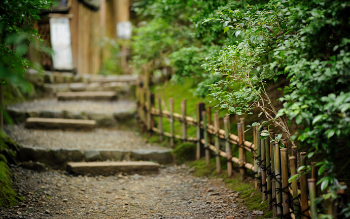 desktop background image of moss at the Gioji Temple (), Kyoto Japan  --  First Picture of the Day Path to the entrance of the Gioji Temple (), after parking the scooter Kyoto, Japan  --  Gioji Temple ()  --  Copyright 2012 Jeffrey Friedl, http://regex.info/blog/