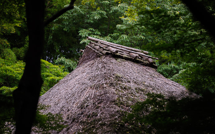 desktop background image of moss at the Gioji Temple (), Kyoto Japan  --  shot #9 Hermitage Roof I love this kind of roof, but I can never do it justice  --  Gioji Temple ()  --  Copyright 2012 Jeffrey Friedl, http://regex.info/blog/