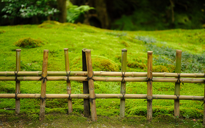 desktop background image of a simple bamboo fence at the Gioji Temple (祇王寺), Kyoto Japan  --  Simple  --  Gioji Temple (祇王寺)  --  Copyright 2012 Jeffrey Friedl, http://regex.info/blog/