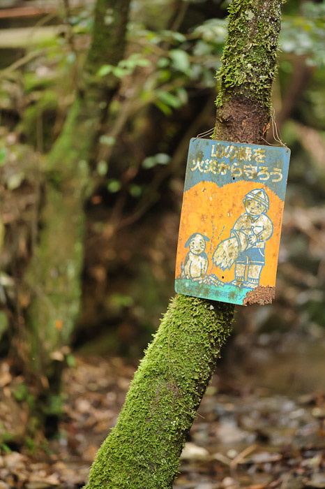 """Protect the Forest From Fire""  --  Kuuya-taki Waterfall (空也滝)  --  Kyoto, Japan  --  Copyright 2012 Jeffrey Friedl, http://regex.info/blog/"