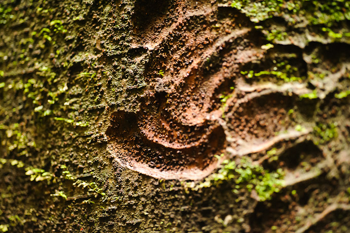 Scooped scoop patterns like in the top of a large tub of ice cream  --  Kuuya-taki Waterfall (空也滝)  --  Kyoto, Japan  --  Copyright 2012 Jeffrey Friedl, http://regex.info/blog/