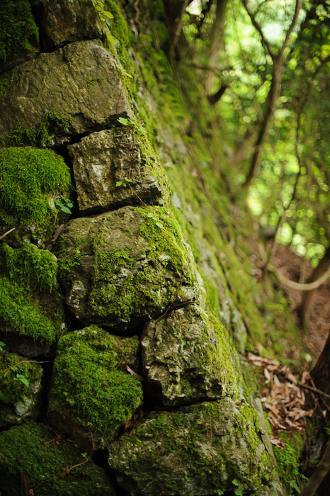 Edge  --  Kuuya-taki Waterfall (空也滝)  --  Kyoto, Japan  --  Copyright 2012 Jeffrey Friedl, http://regex.info/blog/