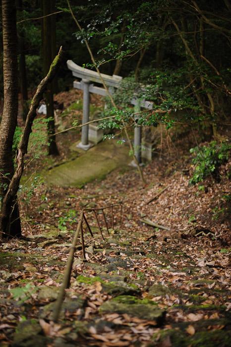 Looking Back on the road less taken  --  Kuuya-taki Waterfall (空也滝)  --  Kyoto, Japan  --  Copyright 2012 Jeffrey Friedl, http://regex.info/blog/