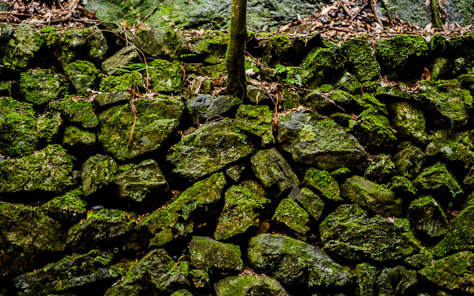 Random Old Wall  --  Kuuya-taki Waterfall (空也滝)  --  Kyoto, Japan  --  Copyright 2012 Jeffrey Friedl, http://regex.info/blog/