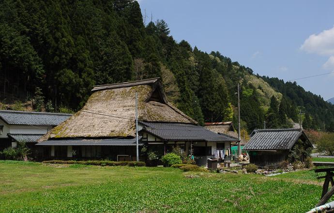 12:19pm - taken while moving at 36 kph (22 mph) -- Kyoto, Japan -- Copyright 2015 Jeffrey Friedl, http://regex.info/blog/