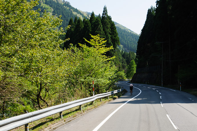 Pretty Curves though still uphill at this point 2:06pm - taken while moving at 26 kph (16 mph) -- 木戸口(バス) -- Otsu, Shiga, Japan -- Copyright 2015 Jeffrey Friedl, http://regex.info/blog/
