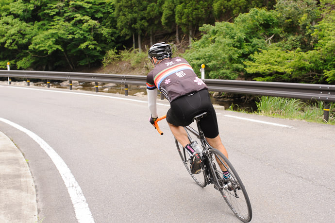 taken while riding at 31 kph (19 mph) -- Nantan, Kyoto, Japan -- Copyright 2015 Jeffrey Friedl, http://regex.info/blog/