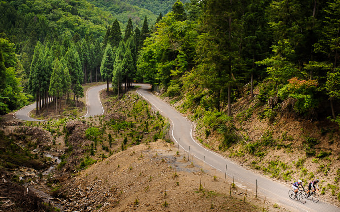 desktop background image of two bicycle riders on a twisty mountain road in Kyoto, Japan -- The Road Ahead may it forever be more interesting than the one behind -- Nantan, Kyoto, Japan -- Copyright 2015 Jeffrey Friedl, http://regex.info/blog/ -- This photo is licensed to the public under the Creative Commons Attribution-NonCommercial 4.0 International License http://creativecommons.org/licenses/by-nc/4.0/ (non-commercial use is freely allowed if proper attribution is given, including a link back to this page on http://regex.info/ when used online)