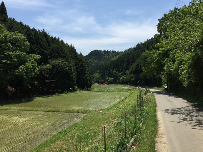 Mountain Countryside -- Takatsuki, Osaka, Japan -- Copyright 2015 Jeffrey Friedl, http://regex.info/blog/