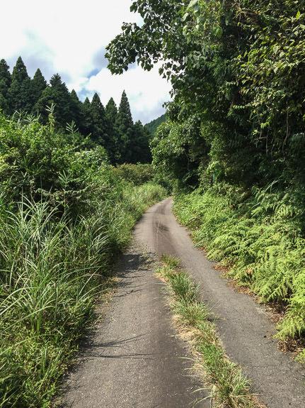 Heading In temperature now 35°C (95F) -- Otsu, Shiga, Japan -- Copyright 2016 Jeffrey Friedl, http://regex.info/blog/