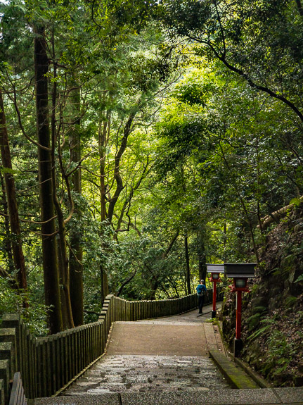 Down Down Down -- Kurama Temple (鞍馬寺) -- Kyoto, Japan -- Copyright 2017 Jeffrey Friedl, http://regex.info/blog/
