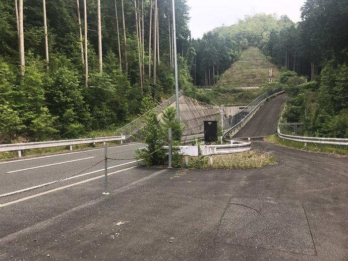 In Front of the Heian Shrine a tree fell across the road -- Heian Shrine (平安神宮) -- Kyoto, Japan -- Copyright 2018 Jeffrey Friedl, http://regex.info/blog/